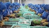 Loại bỏ những rào cản đối với xuất khẩu