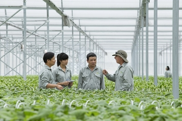 Phát triển HTX gắn với thực hiện tái cơ cấu kinh tế nông nghiệp