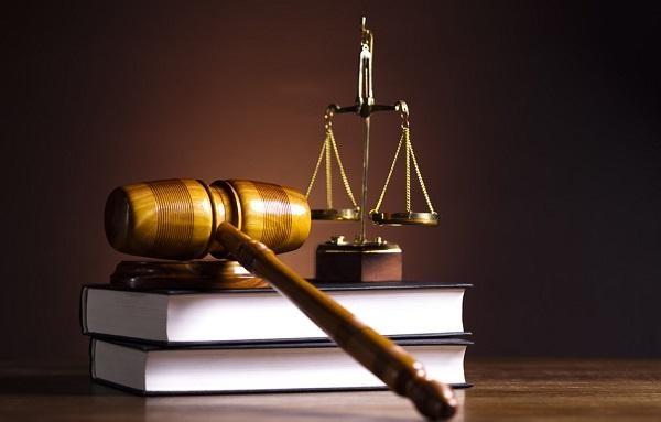 Nghiên cứu, hoàn thiện một số dự án luật