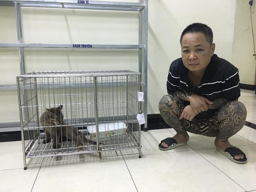 Nuôi, nhốt động vật quý hiếm là phạm pháp