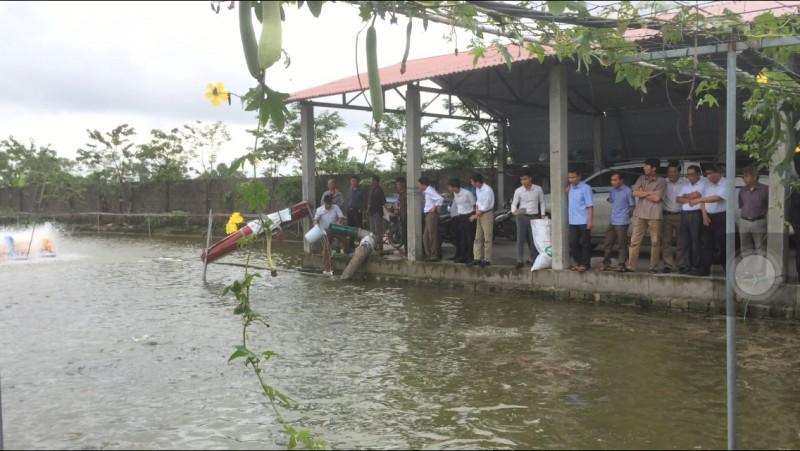 Đẩy mạnh sản xuất nông – lâm – thủy sản