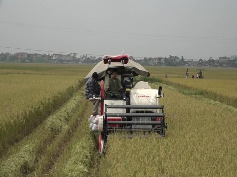 Huyện Mỹ Đức trả lời cử tri những vấn đề về nông nghiệp