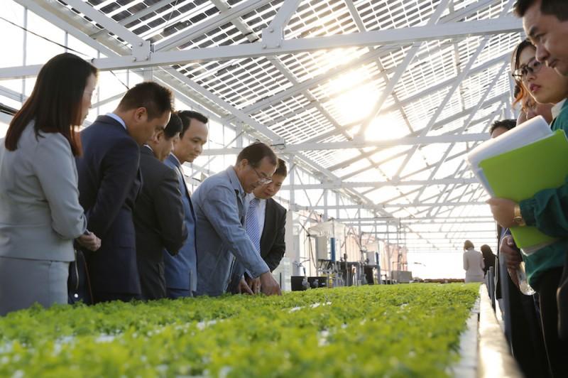 FLC - Farmdo bắt tay làm nông nghiệp và duyên cầu nối từ vị Đại sứ