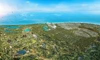 Vũng Tàu ủng hộ phương án đầu tư công viên hoang dã Safari Hồ Tràm