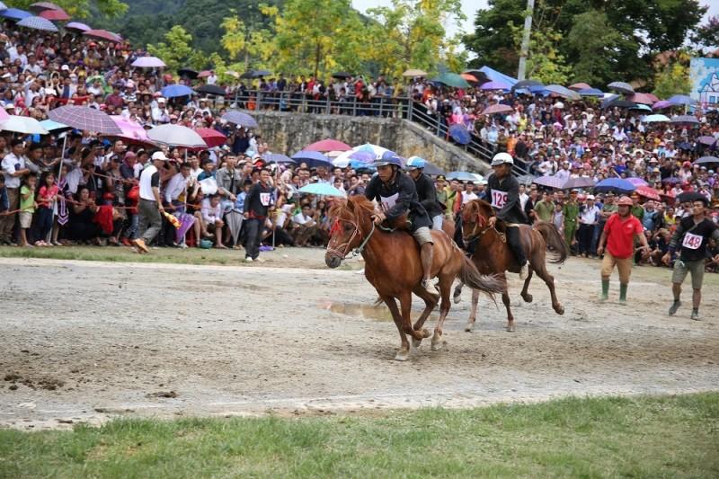 Săn mây Fansipan, cưỡi ngựa Tây Bắc - combo du lịch hoàn hảo tại Sa Pa hè này