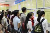 Hơn 500 lao động được tuyển dụng tại ngày hội việc làm quận Cầu Giấy