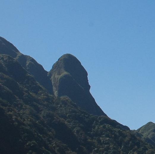 Đỉnh núi dự báo thời tiết, rừng chè cổ ngàn tuổi và những chuyện lạ chỉ có ở Fansipan