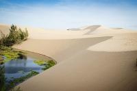 Lợi thế nào để cất cánh tiềm năng mảnh đất Vùng Duyên hải Nam Trung Bộ - Bình Thuận