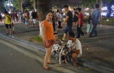 Hà Nội cấm chó không rọ mõm vào phố đi bộ quanh Hồ Gươm