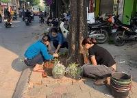 Tích cực xây dựng các tuyến phố kiểu mẫu về trật tự đô thị