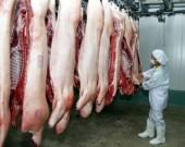 Triển khai Dự án chuỗi thịt lợn VIP Hà Nội