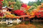 Hội thao xúc tiến du lịch Nhật Bản
