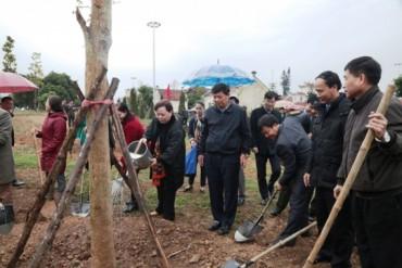 Chủ tịch HĐND TP Nguyễn Thị Bích Ngọc dự lễ phát động Tết trồng cây tại thị xã Sơn Tây