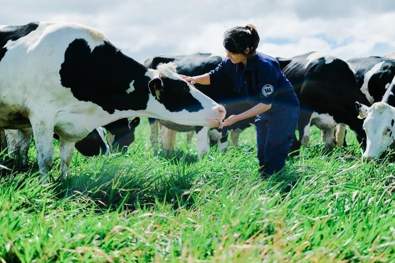 Bước tiến mới trong lĩnh vực 0rganic của ngành sữa Việt Nam