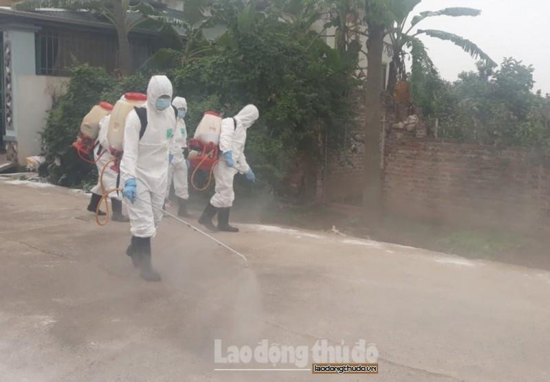 Hà Nội quyết liệt phòng, chống bệnh Dịch tả lợn Châu Phi, bệnh sởi, sốt xuất huyết