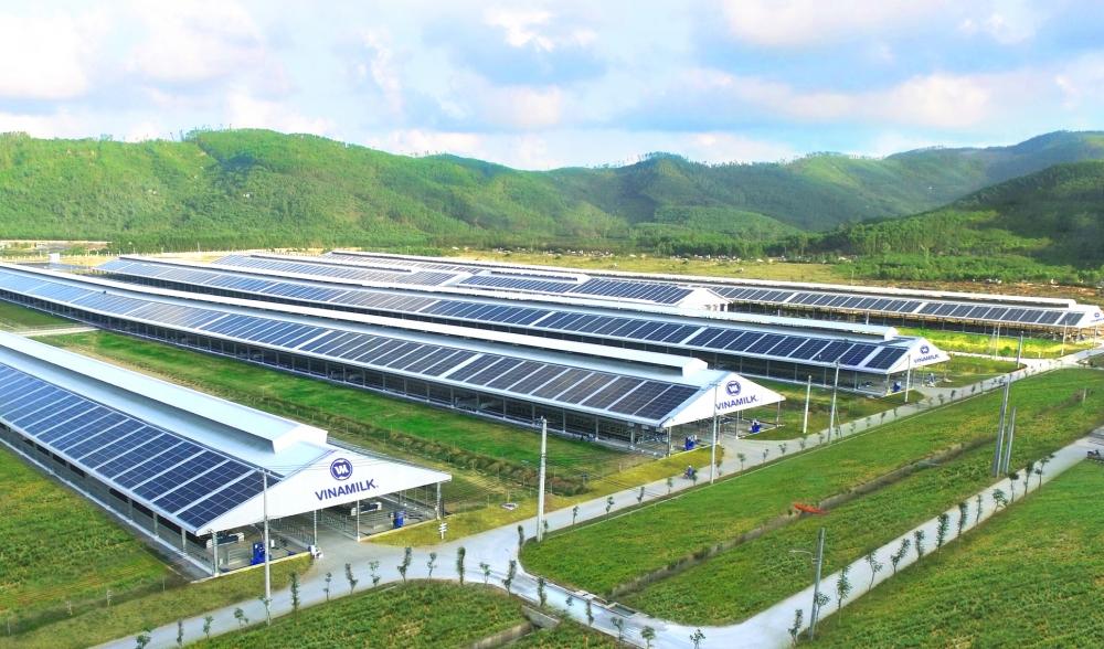 Năng lượng mặt trời được triển khai trên toàn bộ hệ thống các trang trại của Vinamilk