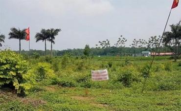 Kết luận thanh tra đất Đồng Tâm: Thu hồi diện tích đất quốc phòng bị chiếm