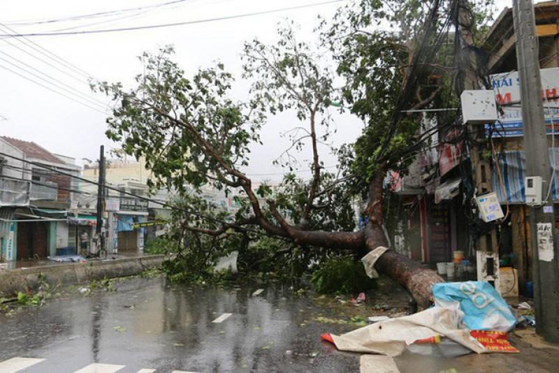 Thủ tướng biểu dương hành động dũng cảm cứu người trong bão dữ