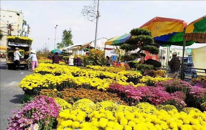 HàNội tổ chức 51 điểm chợ hoa xuân phục vụ Tết Nguyên đán Canh Tý năm 2020