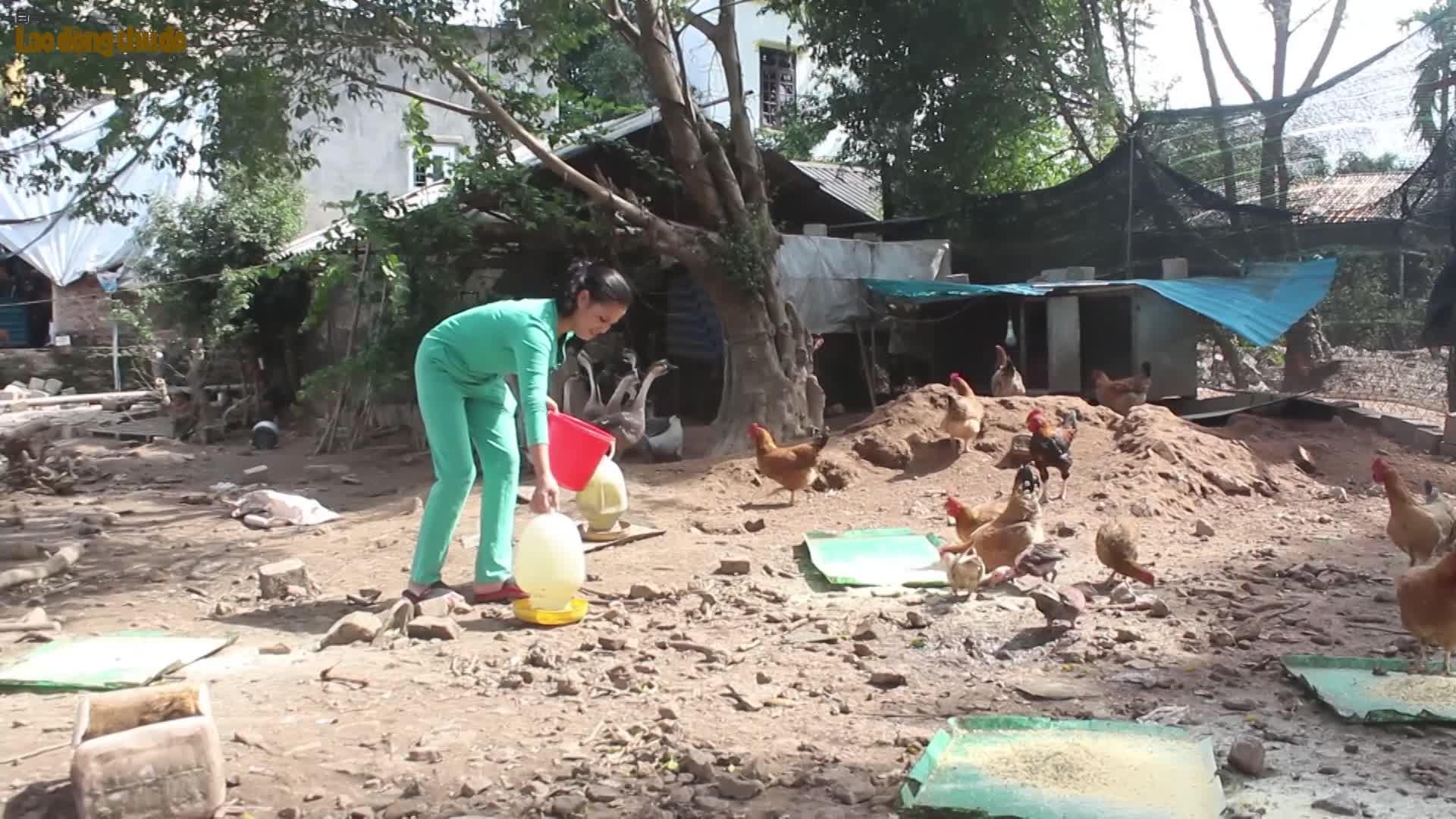 Quỹ Trợ vốn công nhân viên chức lao động nghèo Thủ đô phát triển kinh tế gia đình: Tạo kế sinh nhai bền vững cho đoàn viên công đoàn
